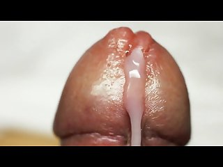 Close up cock cumming