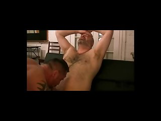 Hairy bareback bear play