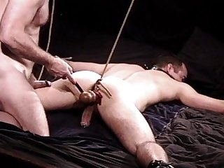 Hung stud ball stretching cbt