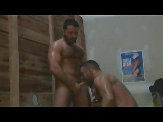 Muscle bear motel