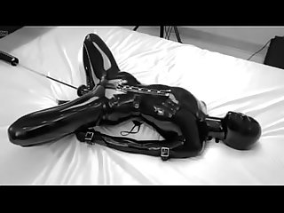 Www period sextopia period ga colon latex bondage girl