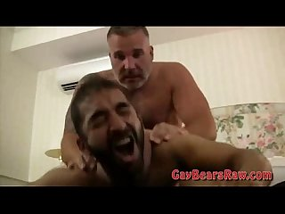 Hairy bear ass finger fucked