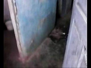 Toilet videos